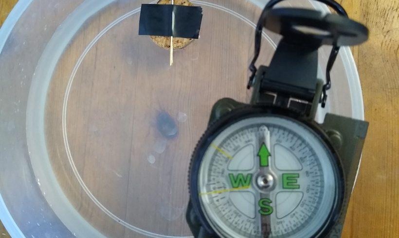 TIPP 25.3.2020: Do-it-yourself Kompass